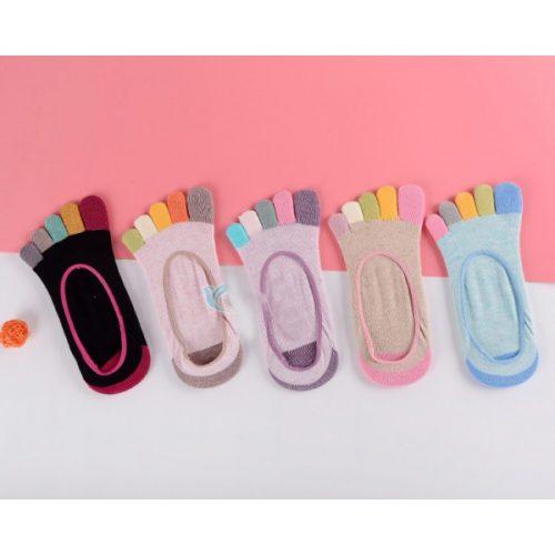 robbie-socks-special
