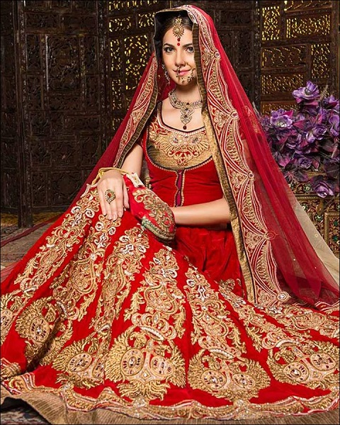 Traditional Red And Gold Lehenga Indian Wedding Dress